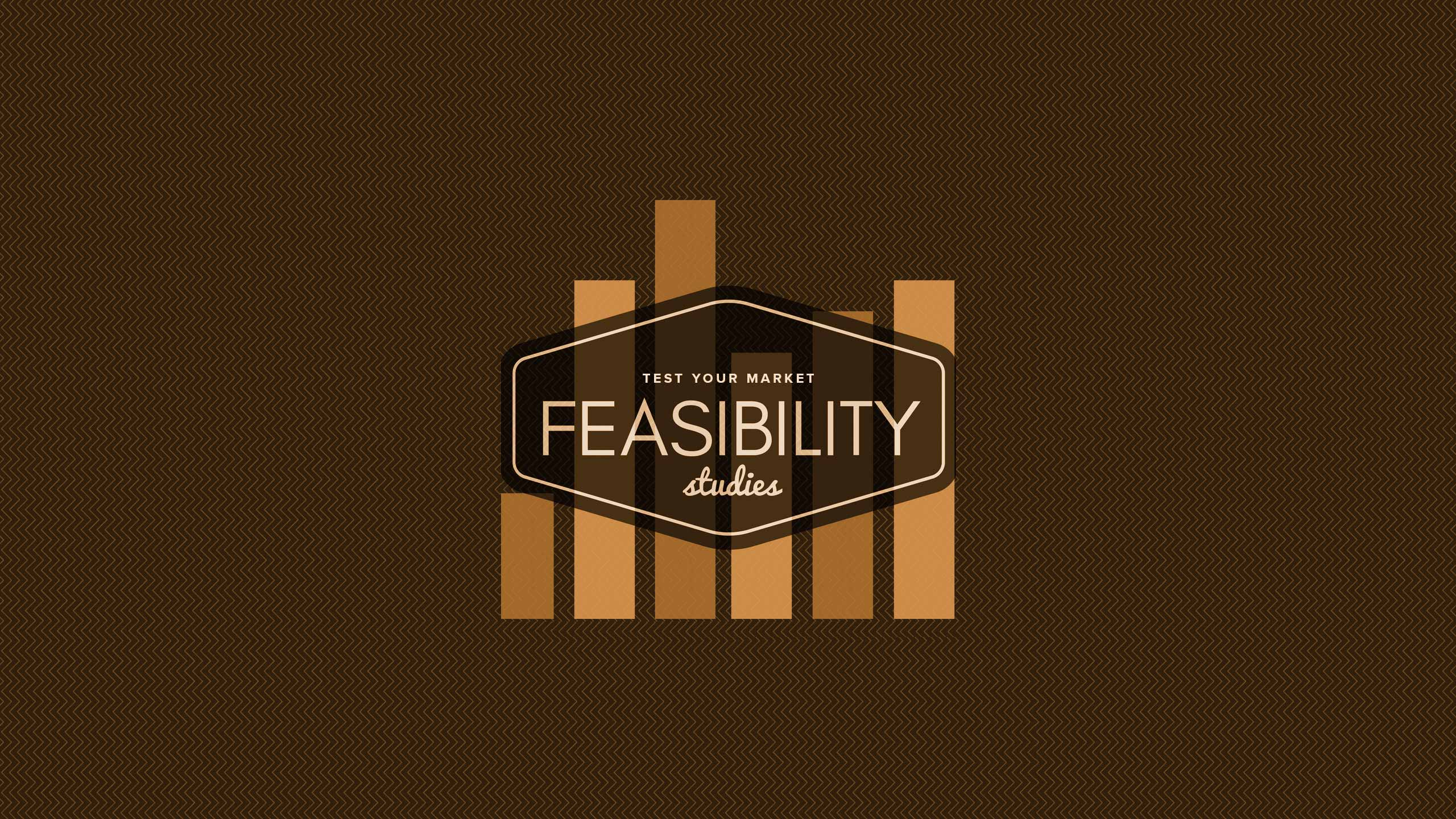 08-feasibilty-studies